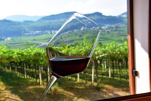 Amarone wine tour_glass