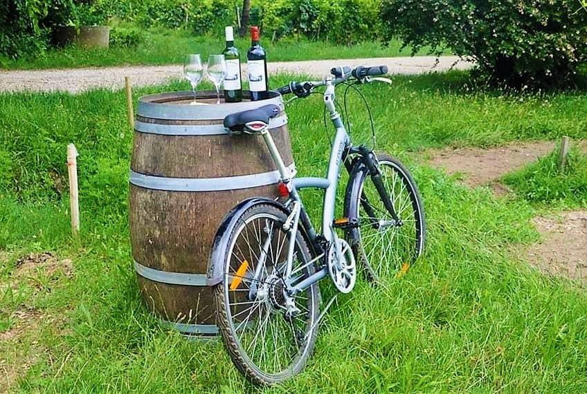 Valpolicella bici tour_bike and wine