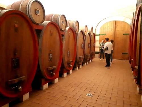 Amarone barrel room