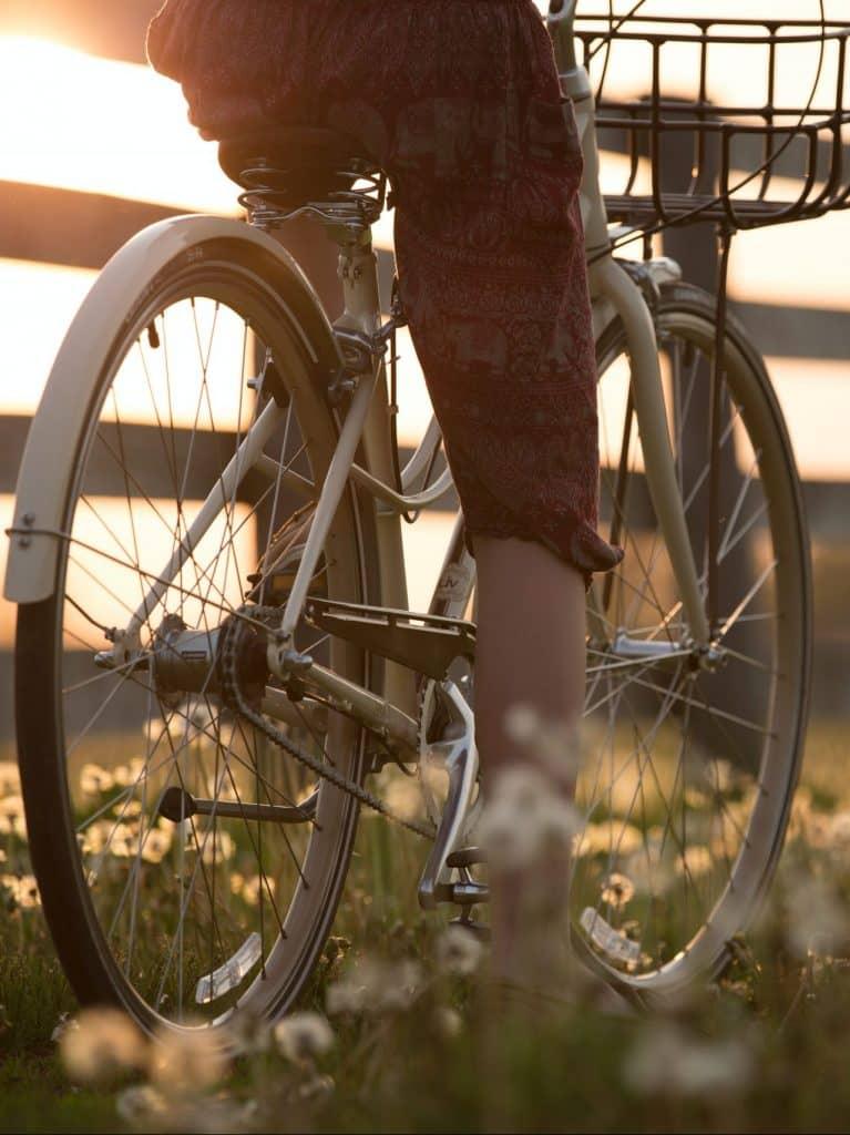 bike tours-bike