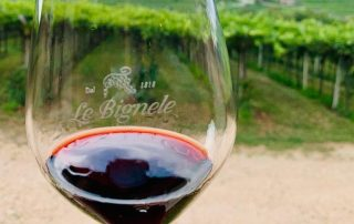 Verona wine blog-Ripasso glass